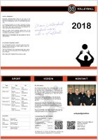 Neuer Info-Flyer der Volleys
